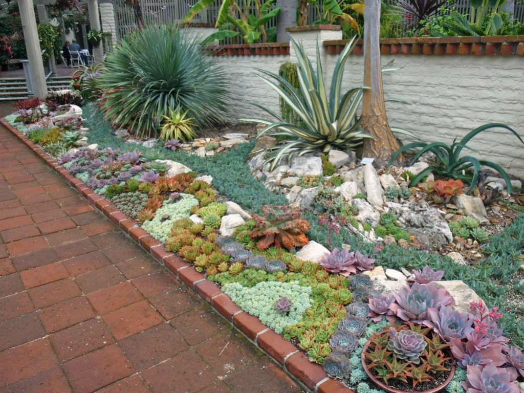 How To Plant An Outdoor Succulent Garden World Of Succulents Succulent Landscaping Front Yard Succulent Rock Garden Succulent Garden Outdoor