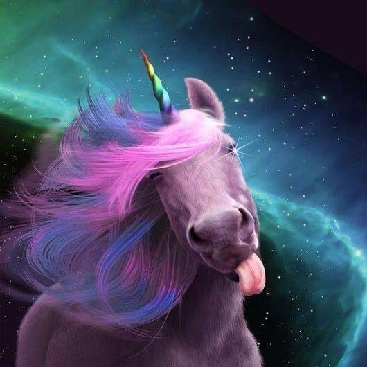 One Woman Grooms Her Horses To Look Like Unicorns Real Unicorn