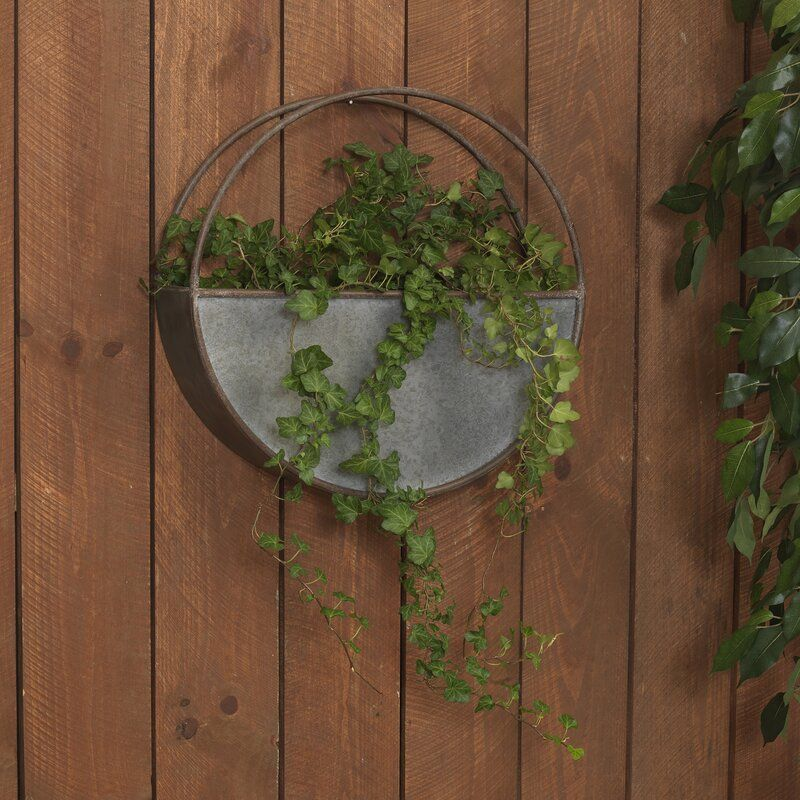 Painswick Wall Planter Galvanized Wall Planter Wall Planter Planters