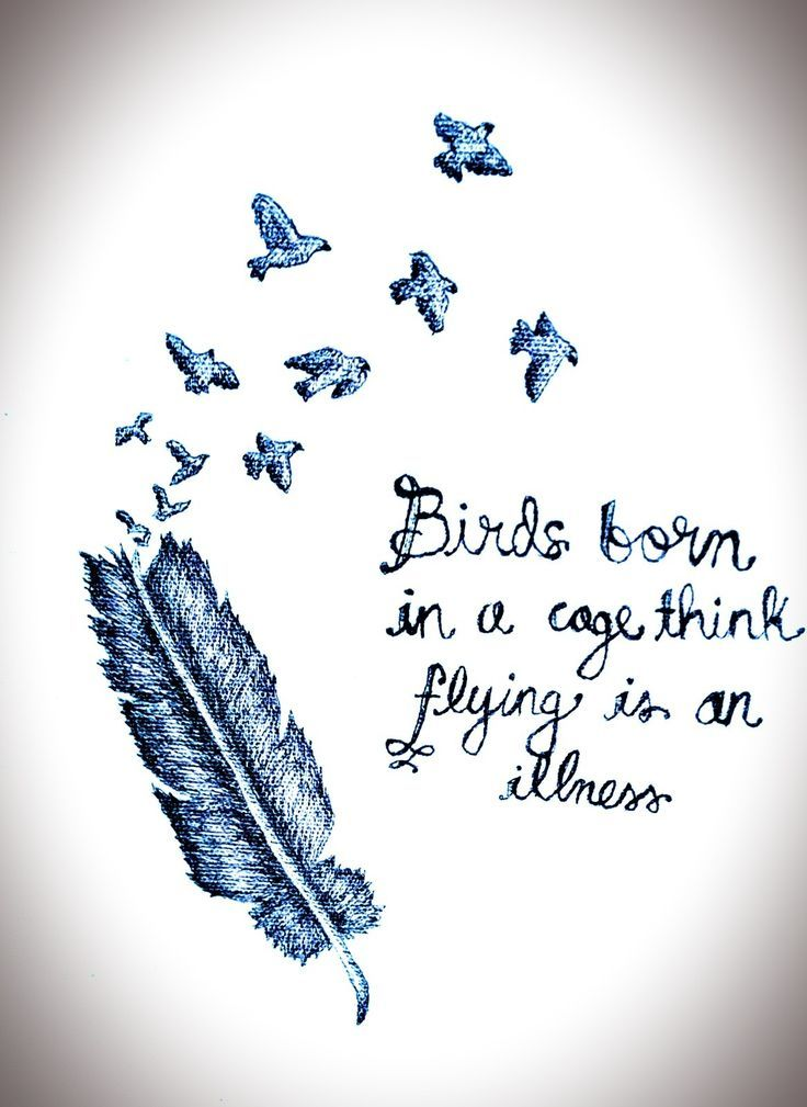 Birds Quotes Delectable Birds Born In A Cage Think Flying Is An Illnesswisdom Birds