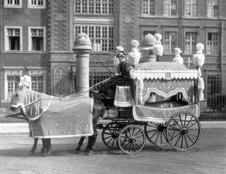 horse-drawn hearses on tumblr - Google Search