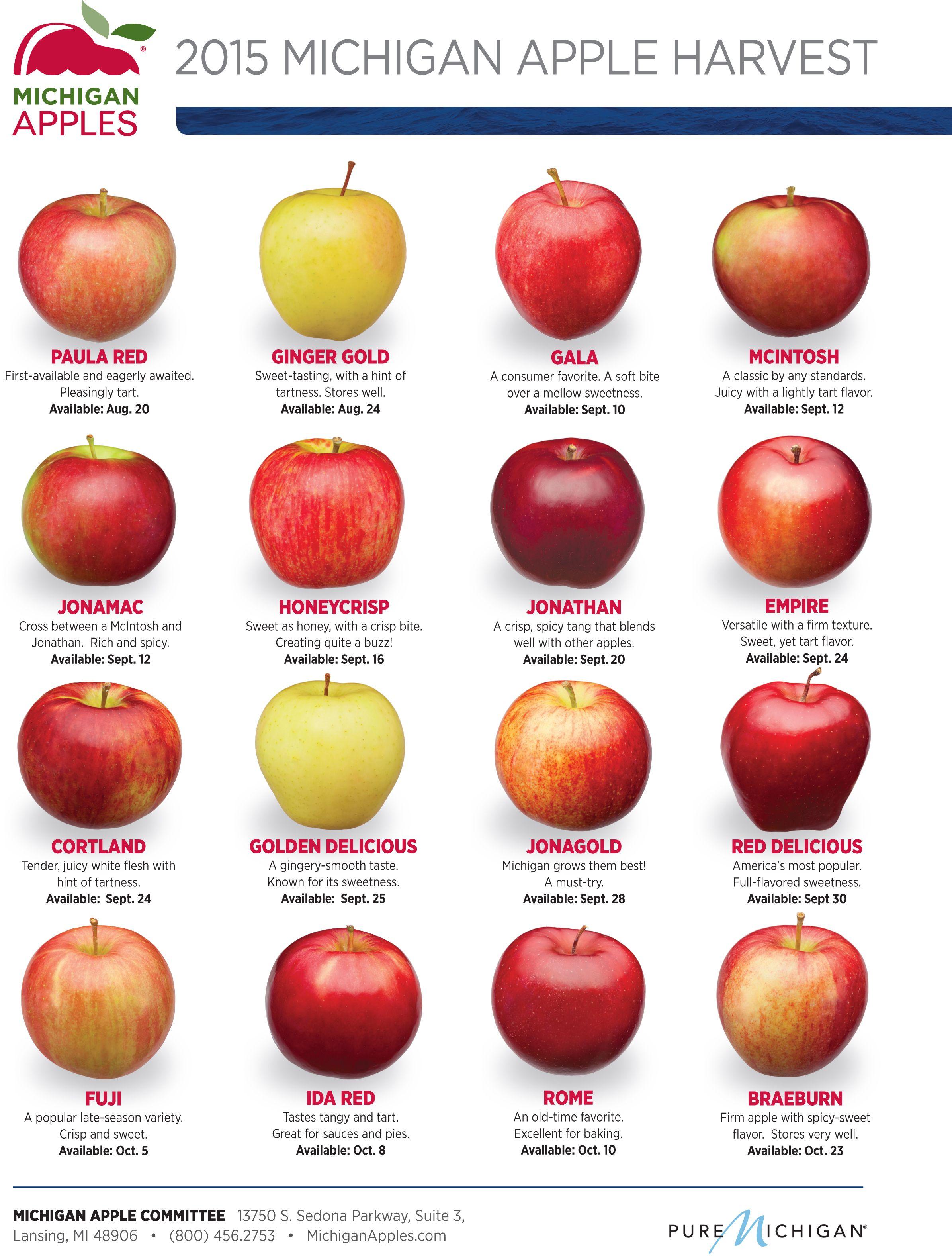 2015 Michigan Apple Harvest Dates - MichiganApples.com ...