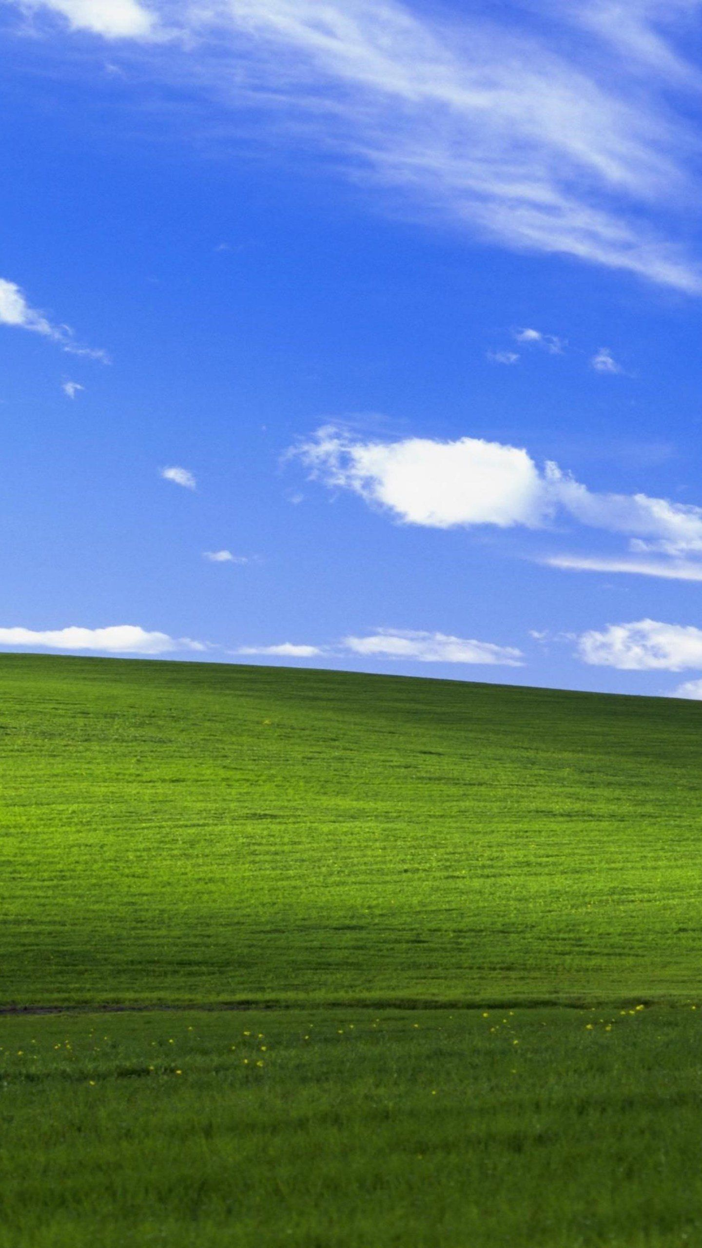 Windows Xp Bliss 4k Hd Computer Wallpapers Photos And Pictures Computer Wallpaper Backgrounds Phone Wallpapers Wallpaper Downloads