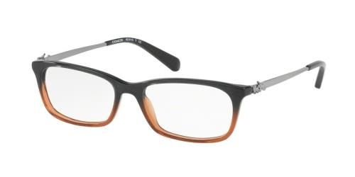 ebf5d442d0cd Picture of Coach HC6110 Designer Eyeglasses