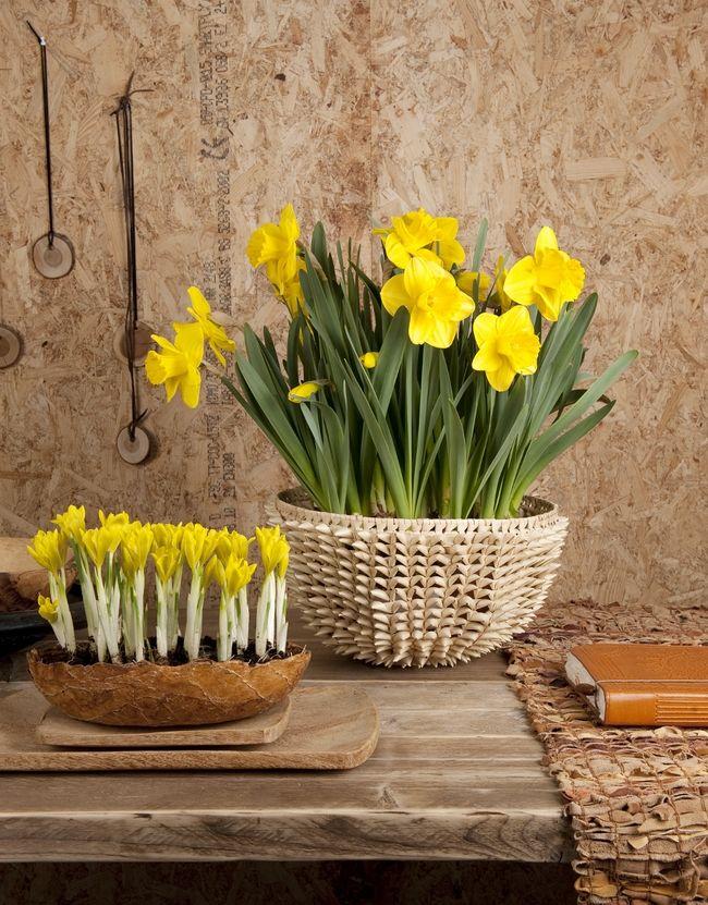 spring decorating ideas home bulbs crocuses daffodils sunny yellow - Spring Decorating Ideas