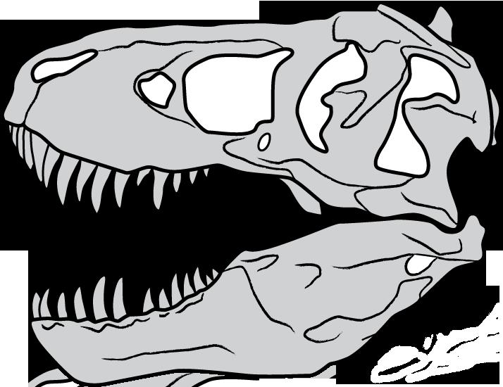 T Rex Skull By Belverine On Deviantart Dinosaur Drawing Dinosaur Silhouette Skeleton Drawings