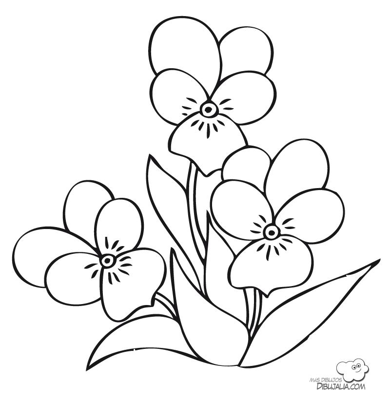 Tres Flores Para El Jardin Dibujalia Dibujos Para Colorear Patrones De Bordado Patrones De Bordados Florales Dibujos