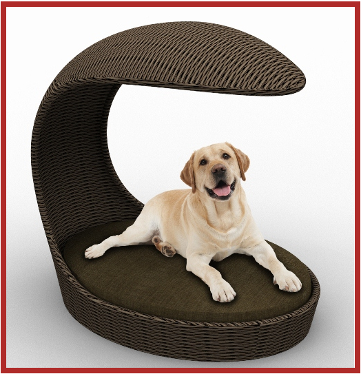 outdoor dog chaise Outdoor dog, Wicker dog bed, Dogs
