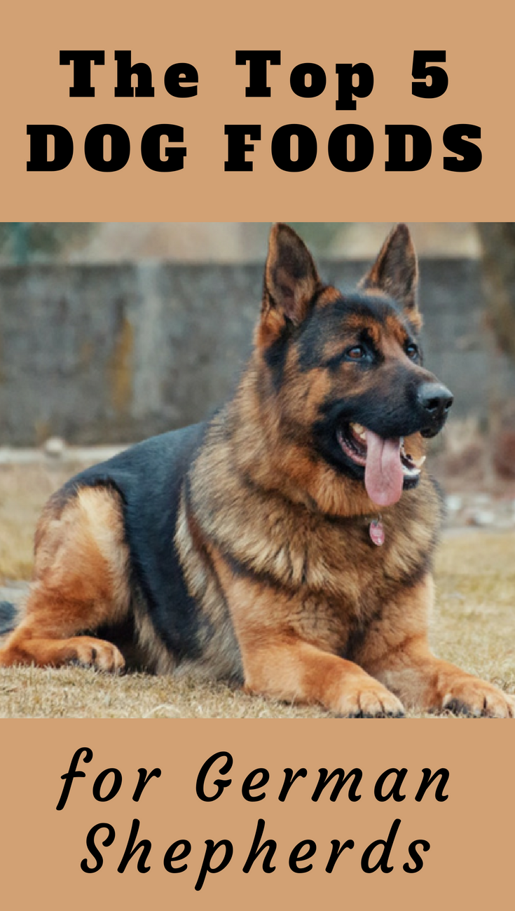 2020 S Top 5 Picks Of Best Dog Food For German Shepherds Best