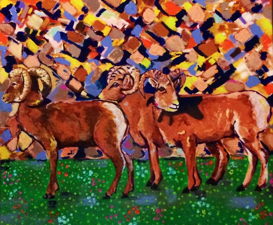 Big Horn Sheep, MT