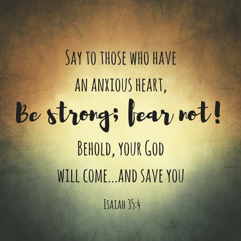 """Weekly verse for December 11th! Say to those who have an anxious heart, """"Be strong; fear not! Behold, your Godwill come…andsave you."""" Isaiah 35:4 Photo Credit: Brittany Kruse Additiona…"""