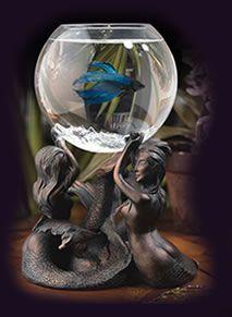 Betta fish bowls a nice gift aquariums pinterest for Fish supplies online