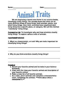 49++ Animal investigation worksheets for 5th graders Images