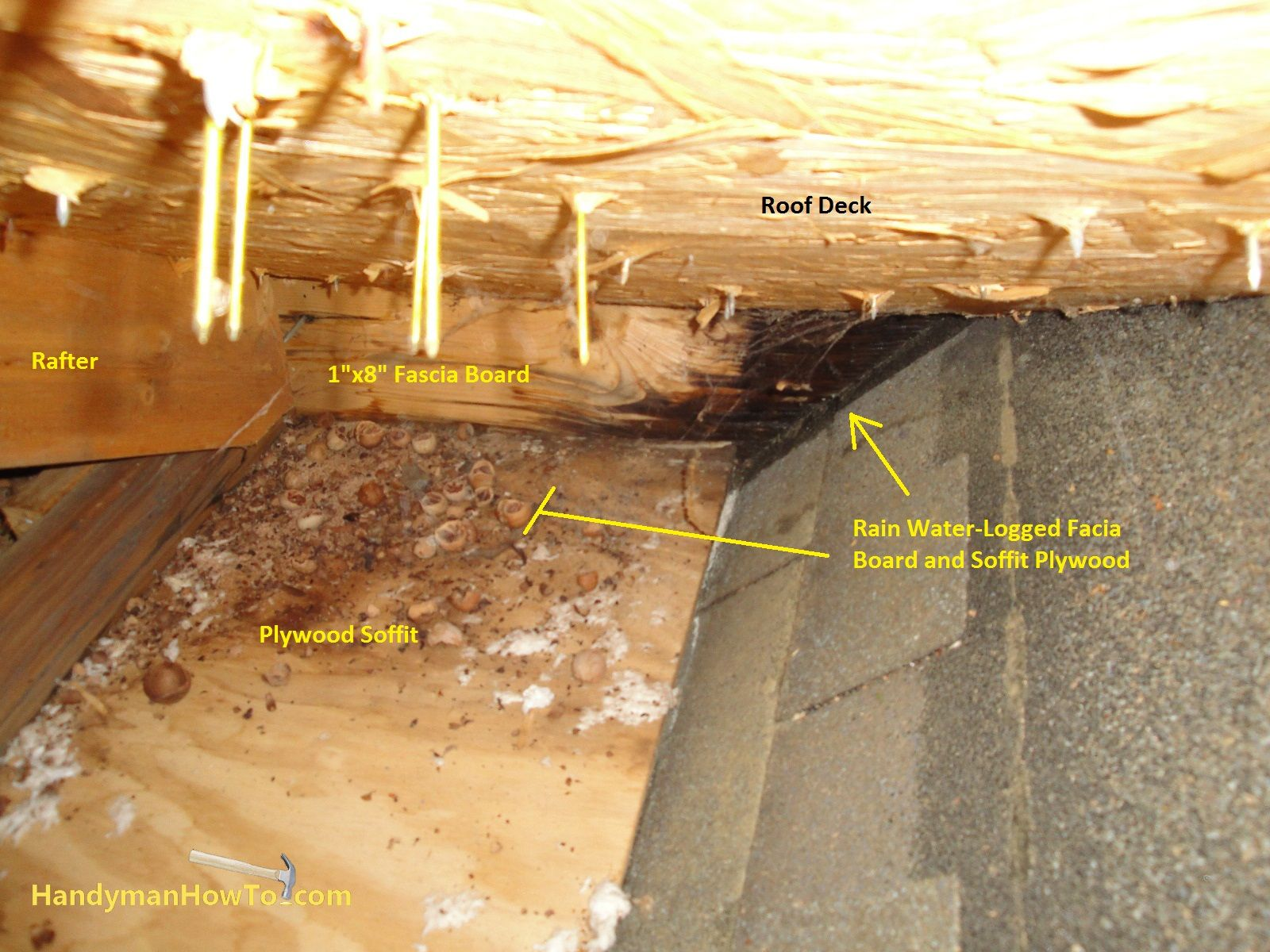 How To Repair Rotted Soffit And Fascia Plastic Roofing Fibreglass Roof Roof Repair