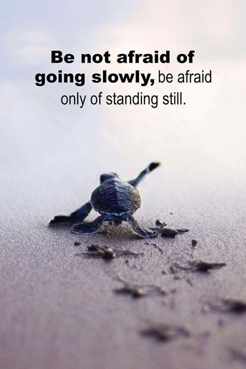 Inspirational Positive Quotes :Be not afraid of going slowly be afraid only of standing still.