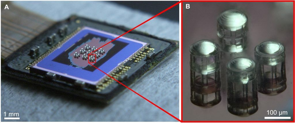 The lenses were printed directly onto a CMOS camera sensor. Photo: Credit: Thiele et al. Sci. Adv. 2017
