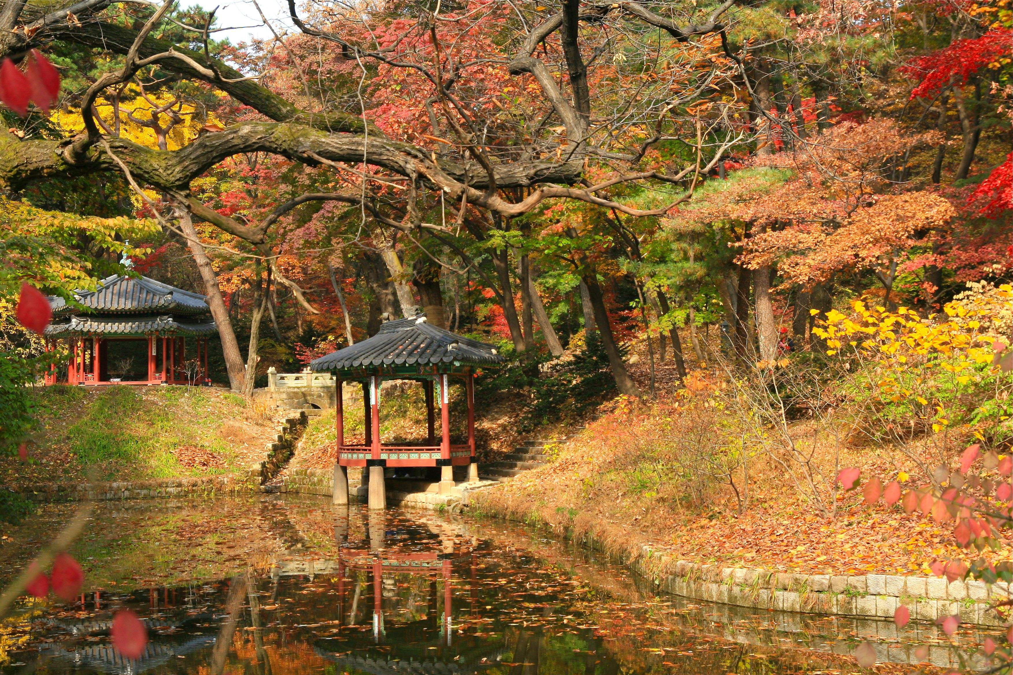 Image result for changdeokgung palace autumn