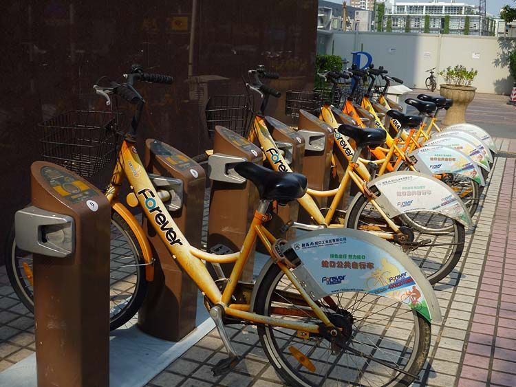 Bicycle Sharing System In Shekou Shenzhen Shenzhen Bicycle