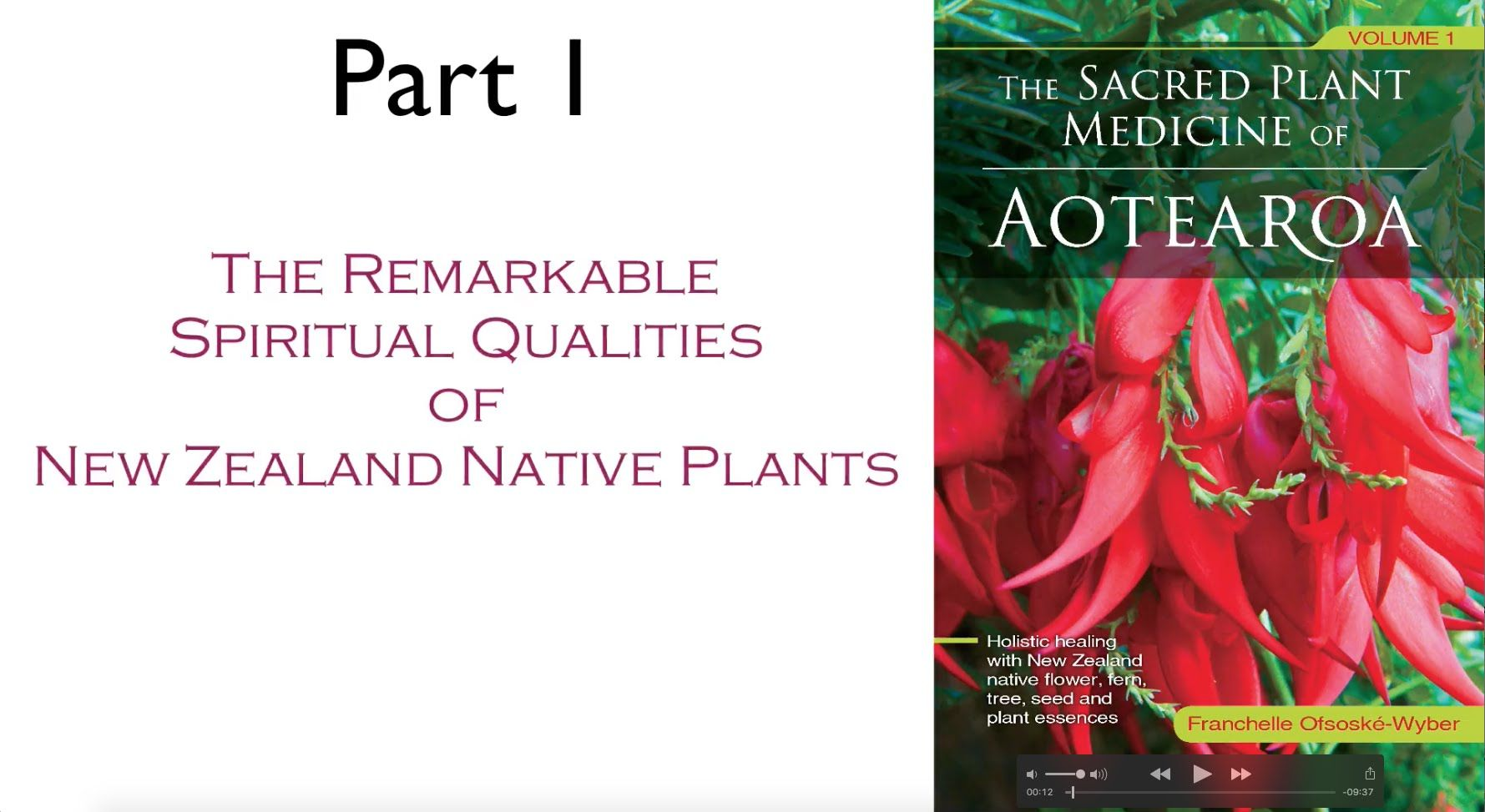 The Sacred Plant Medicine Of Aotearoa Part 1 Sacred Plant Holistic Healing Medicinal Plants