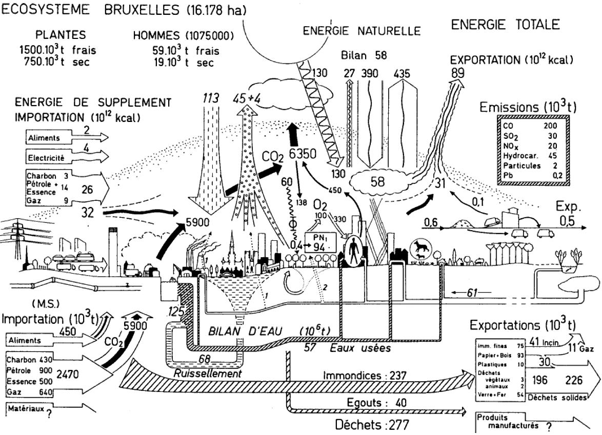 Material Flowysis Diagrams