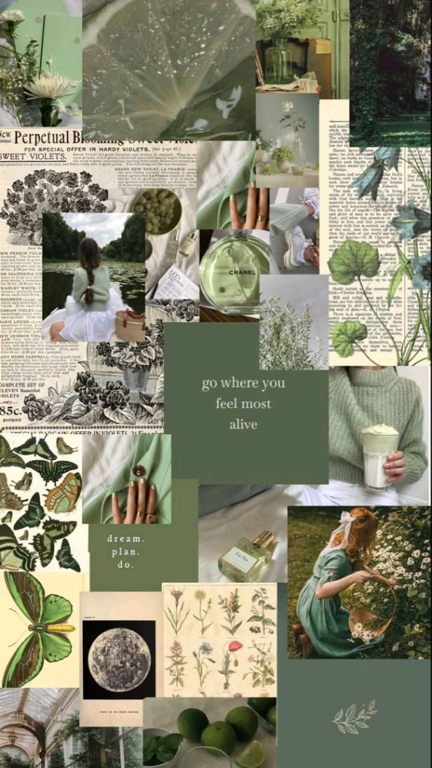 green wallpapers🌱🍀🍃🍏💚
