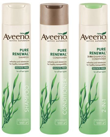 10 Best Aveeno Shampoos Of 2020