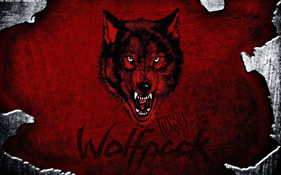 1999 wwe wolfpack sting wallpaper - photo #5