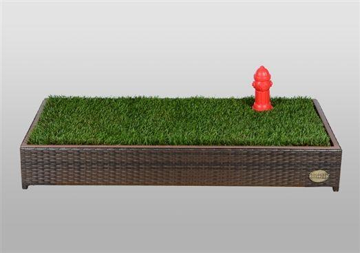 Porch Potty Standard Porch Potty Dog Litter Box Dog Potty