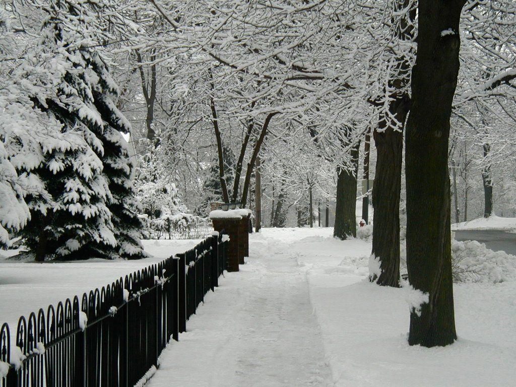 Free Desktop Wallpapers Winter Scenes Wallpaper Winter
