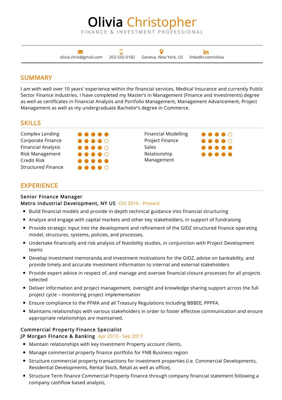 Finance & Investment Professional Resume Example in 2020
