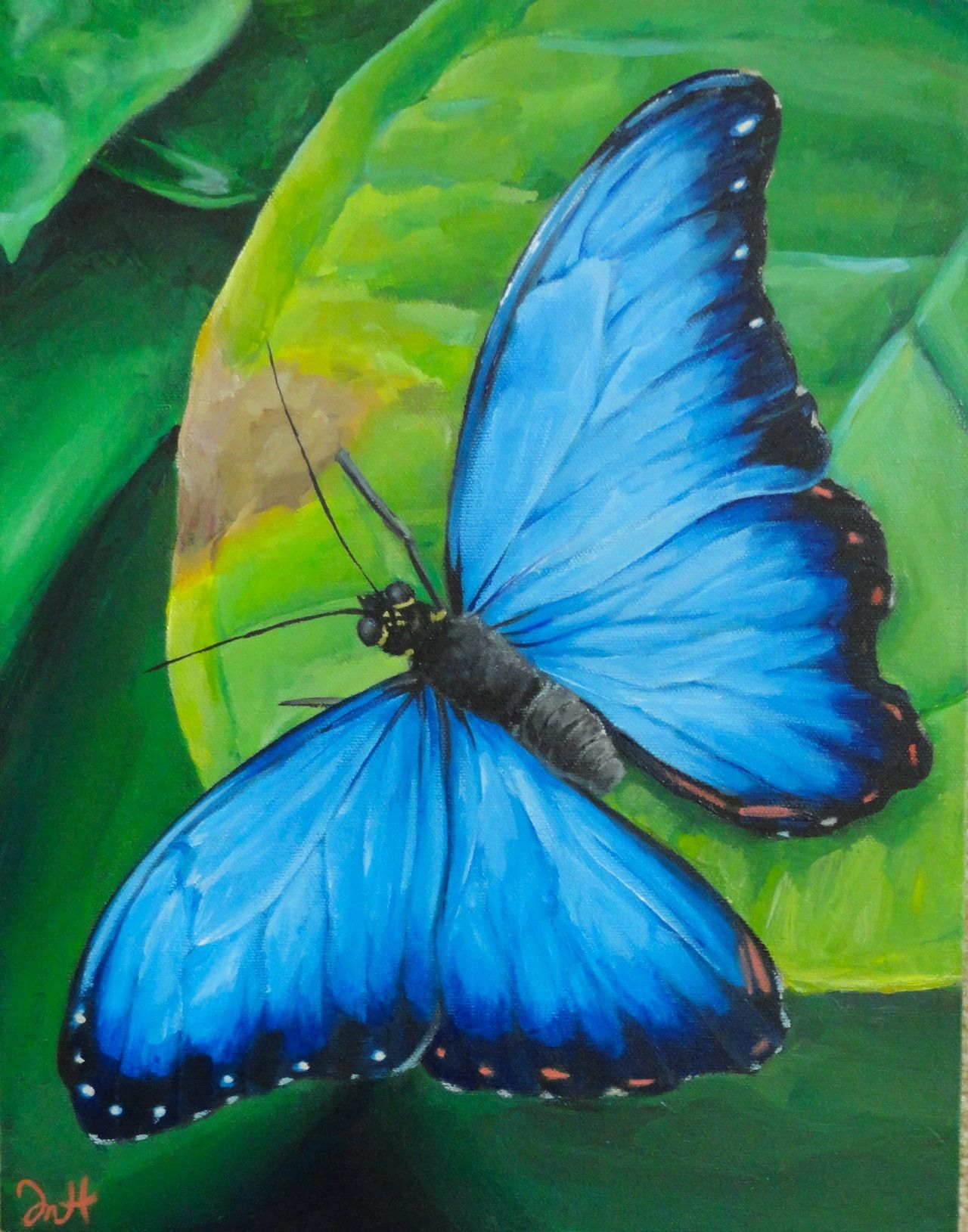 Acrylic Butterfly Painting | Butterflies | Pinterest | Butterfly ... for Butterfly Painting Designs  303mzq