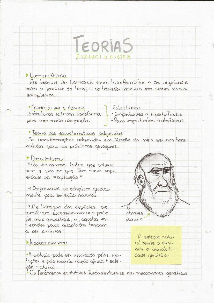 Darwinho E As Teorias Evolucionistas Teoria Da