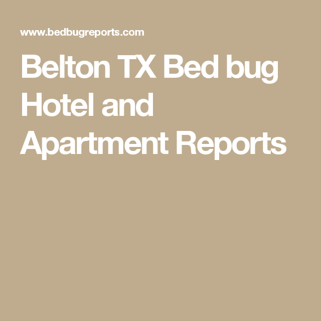 Belton Tx Bed Bug Hotel And Apartment Reports