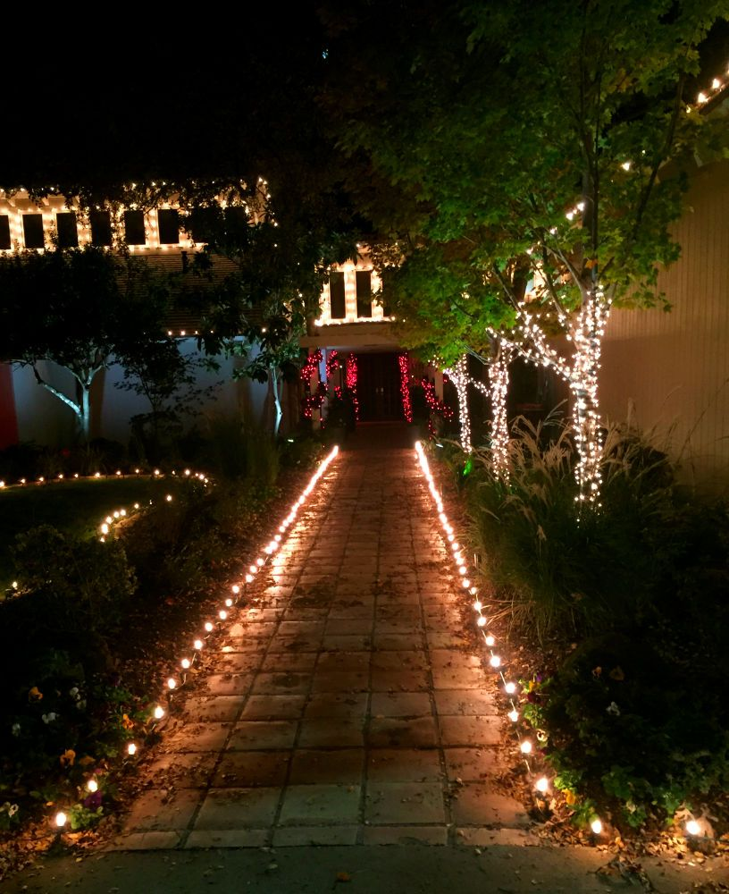 Pin On String Party Lights Installation By Dallas Landscape Lighting