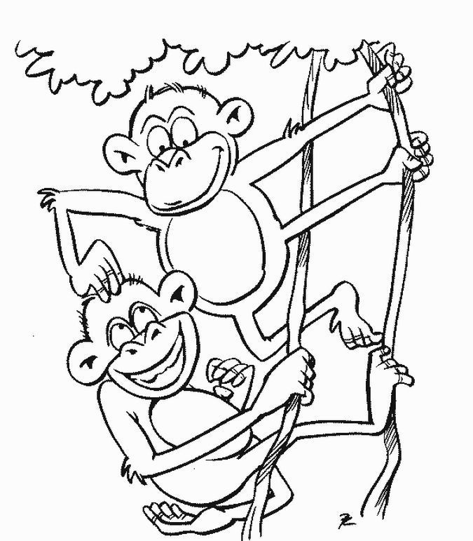 Coloring pages for kids monkey coloring pages feature two monkeys as the main object let kids