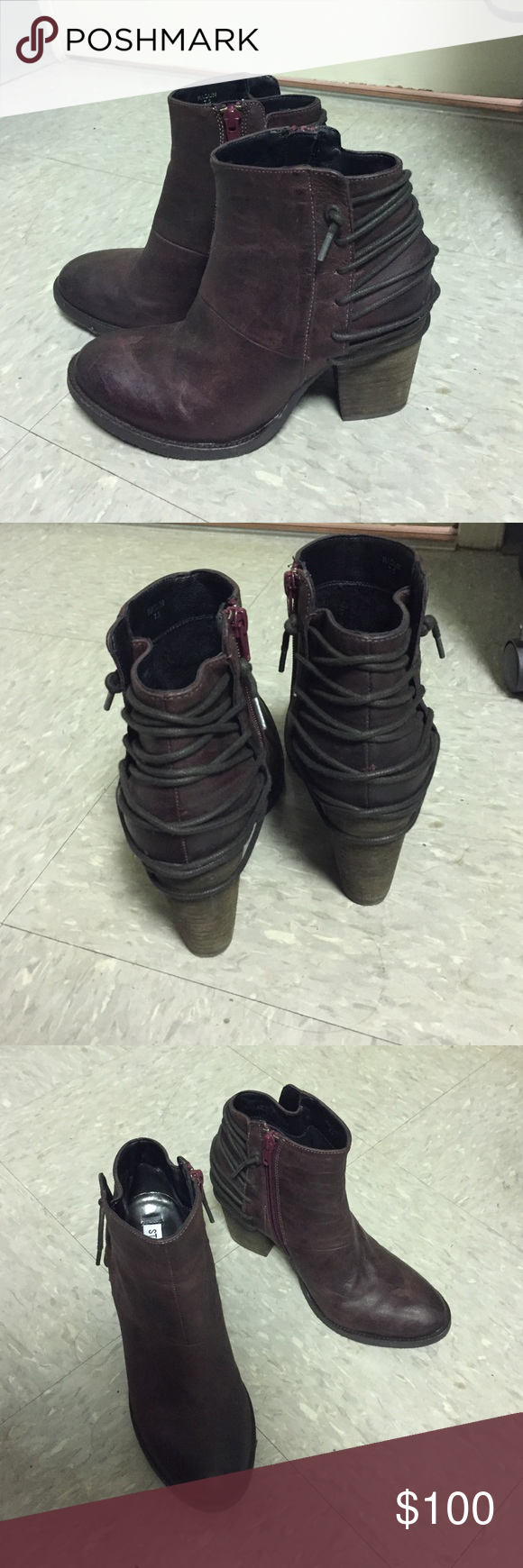 """Steve Madden booties Really cute Steve Madden booties! Nice dark plum/burgundy color -- great for fall and winter! Only worn to dinner twice. Cute lace up on back. In excellent condition just too big for me so got a new pair in my size. This is the """"Raglin"""" bootie. Steve Madden Shoes Ankle Boots & Booties"""