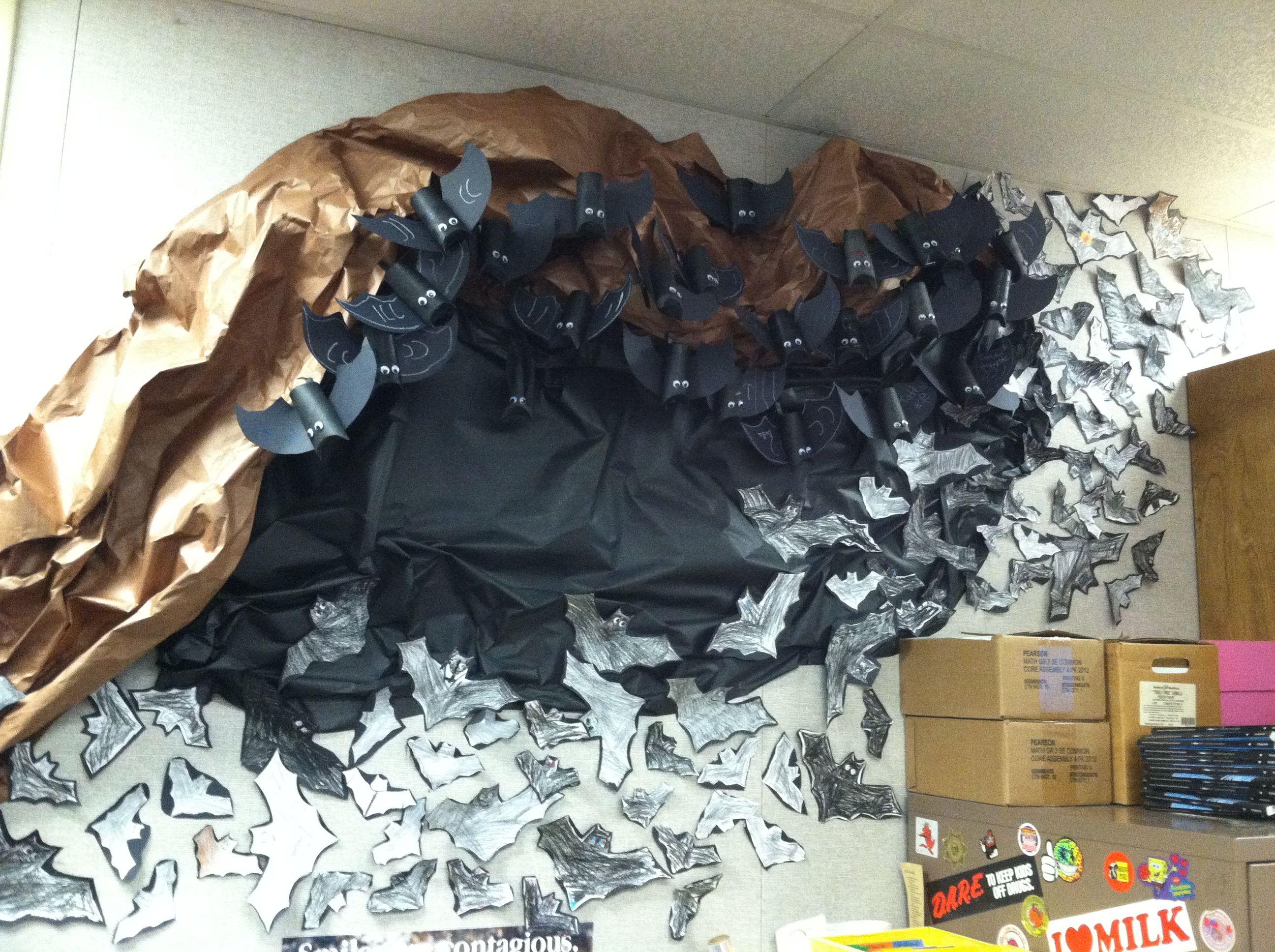 Classroom Bat Cave