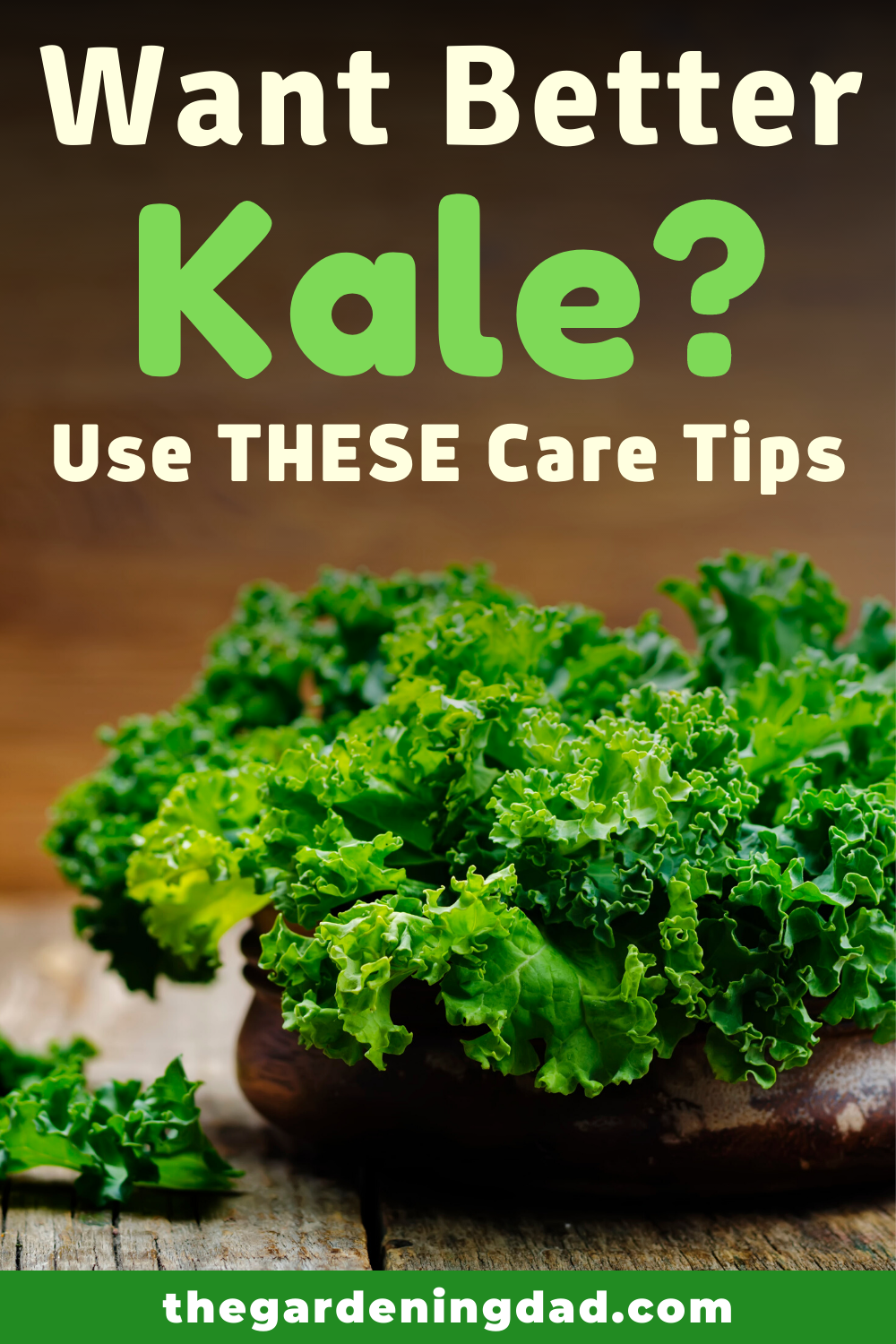 How to Grow Kale from Seed (6 Quick Tips) in 2020 ... Companion Planting Kale