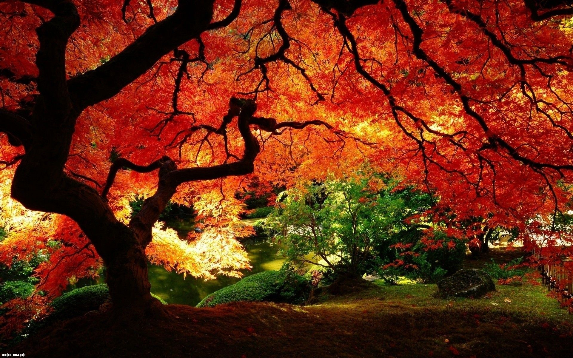 Kartinki Po Zaprosu Samye Krasivye Mesta V Mire Autumn Scenery Landscape Wallpaper Fall Wallpaper
