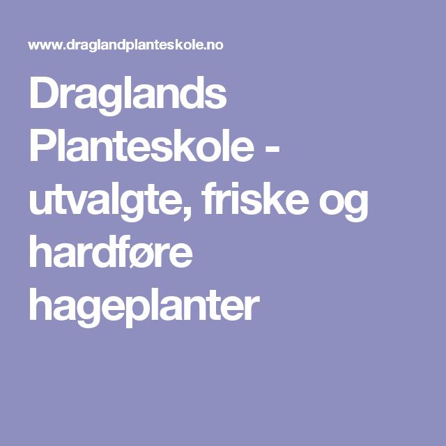 Draglands Planteskole - utvalgte, friske og hardføre hageplanter