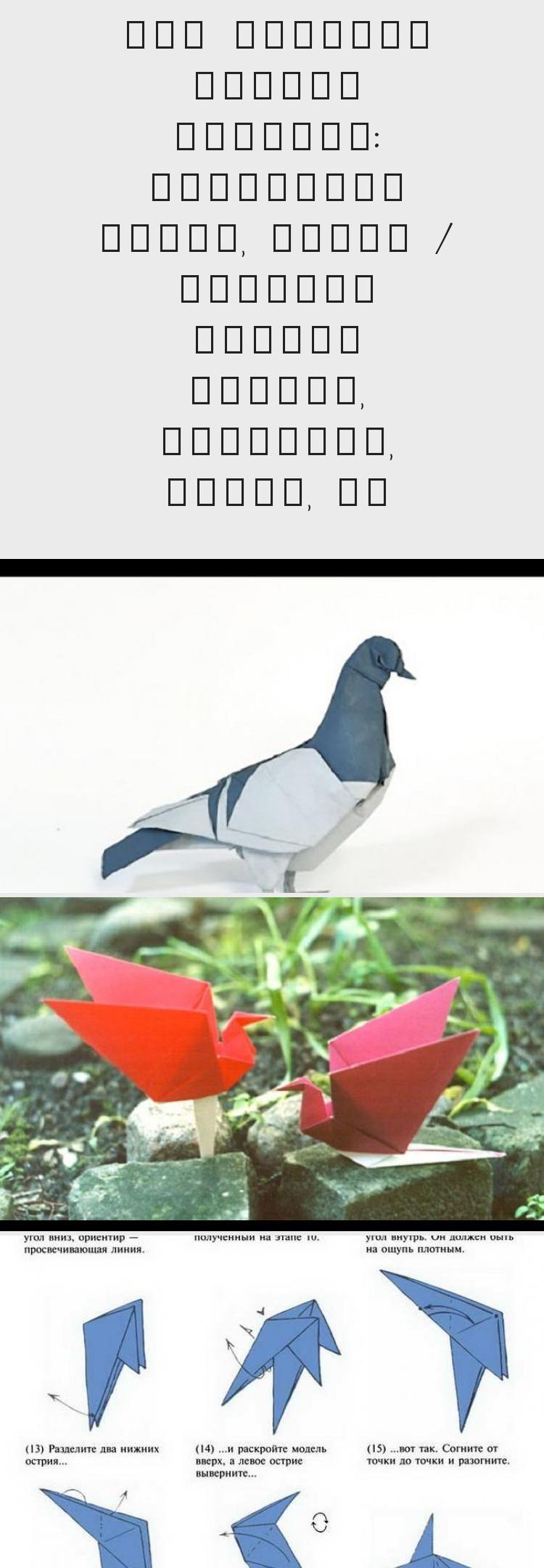 Photo of Come fare una colomba nella tecnica degli origami #origamiPasoAPaso #origamiVide…