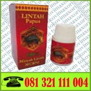 lintah oil papua lintah oil papua minyak lintah papua original