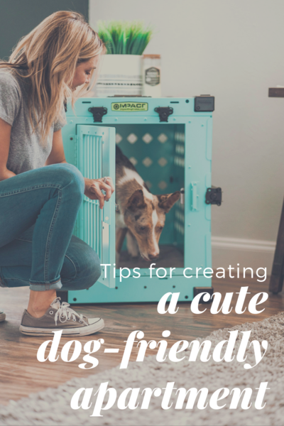 Tips For Creating A Cute Dog Friendly Apartment Dog Friendly Apartments Apartment Dogs Dog Friends