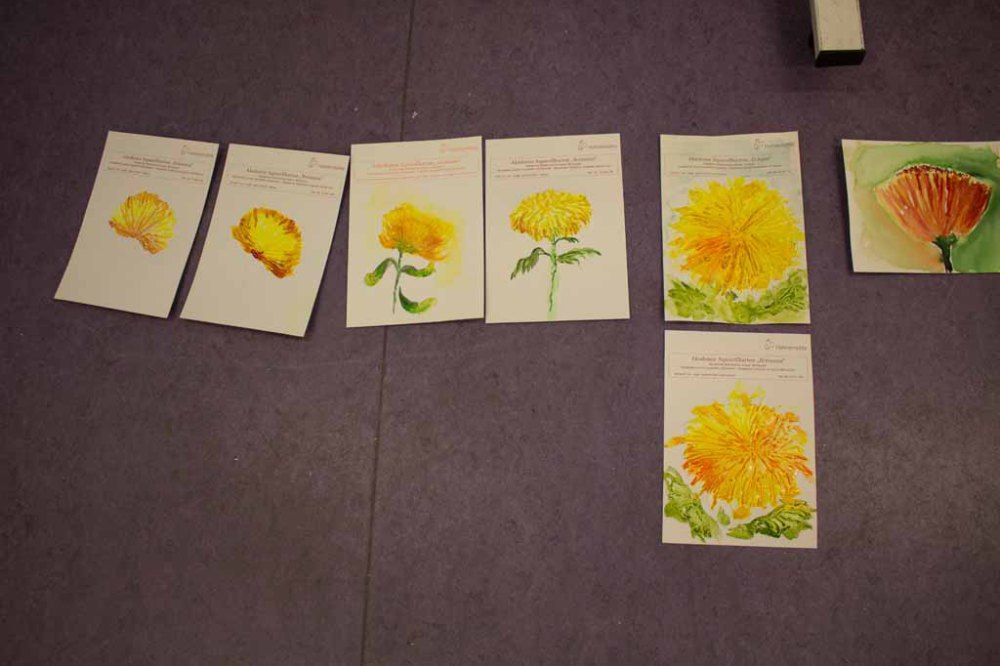 Malkurs – Chrysanthemen Aquarelle | Welches Aquarellpapier eignet sich für die Chrysanthemen Aquarelle (c) Frank Koebsch (2)