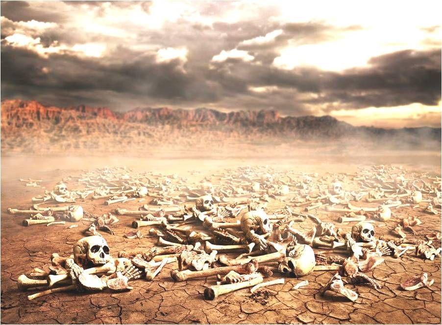 dry bones - Google 검색