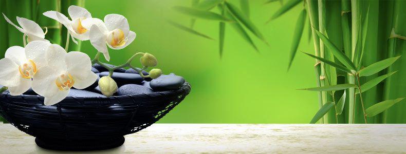 Feng Shui Tips For Excellent Results Astrokrsna Pinterest