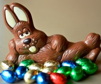 Lapin paques chocolat francine therrien chocolate easter bunny easter et easter bunny images - Image lapin de paques ...