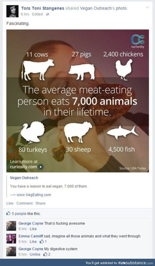 Rookie numbers - FunSubstance   Funny, Vegan, Funny pictures