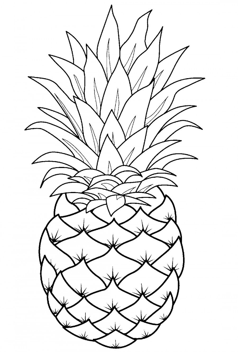 Pineapple Template Line Art Drawings Fruit Coloring Pages