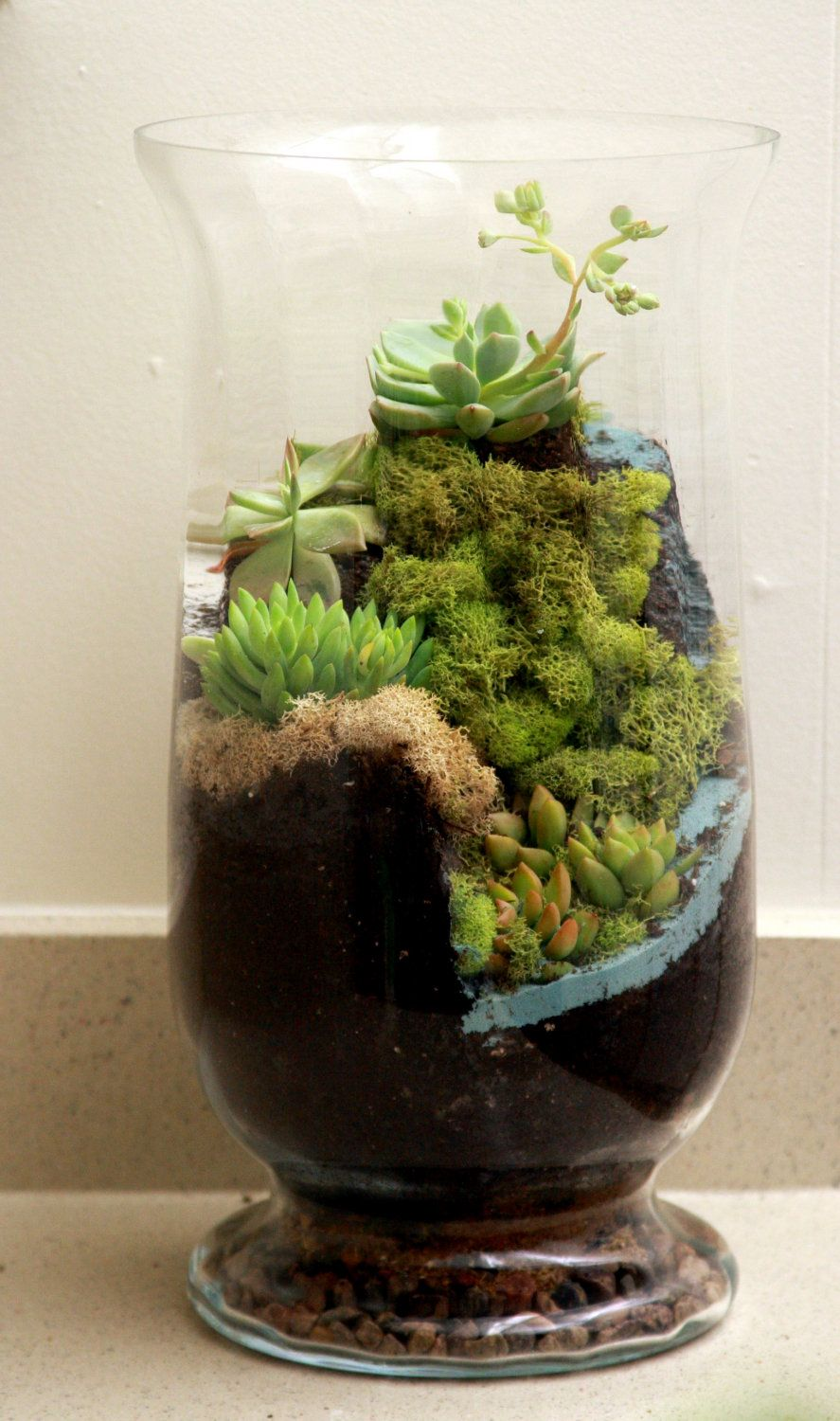 Another world succulent waterfall terrarium via for Terrario vertical
